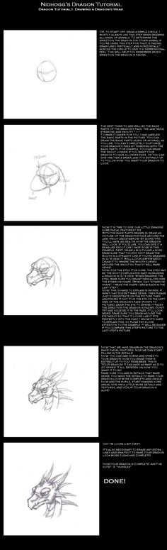 Dragon Head Tutorial by Ragnarokdragon on DeviantArt Dragon Scale, Dragon Head, Drawing Tips, Drawing Reference, Drawing Board, Drawing Ideas, Character Design Tutorial, Was Ist Pinterest, Body Hacks