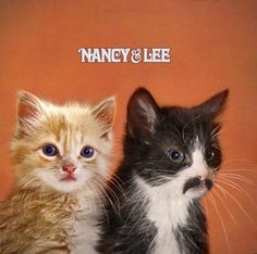 Fancy & Squee: Nancy & Lee with cats