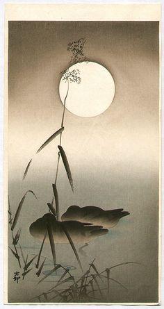 Sleeping Ducks, 1910      Ohara Koson