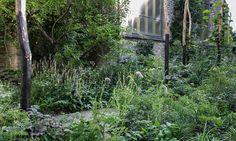 — Dan Pearson Studio | Garden Museum