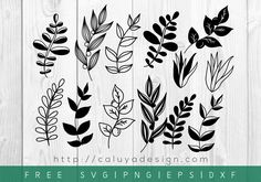 Free Botanical Leaves SVG, PNG, EPS & DXF Download. Compatible with Cameo Silhouette, Cricut and other major cutting machines. Perfect for DIY projects for family, friends and yourself!