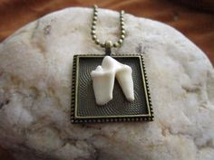 The molar measures long x wide and is framed inside a 1 Antique Brass Bezel Setting. The ball chain is long. This is an amazing statement pendant and one of a kind. Necklace Chain, Arrow Necklace, Pendant Necklace, Molar Tooth, Tooth And Claw, Thing 1, Animal Bones, Biker Chic, Black Rock