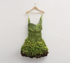 Raegan  -  I remember a fun day we had making Barbie dresses out of leaves and other assorted ground, bush & tree materials ...& quite successful  & stylish !  Cabbage, grapes, broccoli like this full size one, might have  been a few sizes to big for Barbie...  .--   Woman's Dress.S)Тоалет...