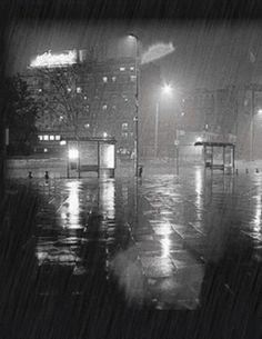Rain - rain Photo