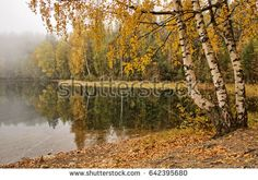 Stock Photo: Peaceful foggy autumn lake view with vibrant fall colors in Finland. -