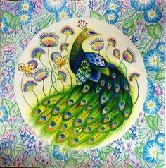Inspirational Coloring Pages #inspiração #coloringbooks #livrosdecolorir #jardimsecreto #secretgarden #florestaencantada #enchantedforest #reinoanimal #animalkingdom #adultcoloring #milliemarotta #lostocean #oceanoperdido #johannabasford