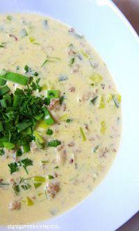 Käse-Lauch-Suppe mit Hackfleisch (Thermomix - Rezepte mit Herz)