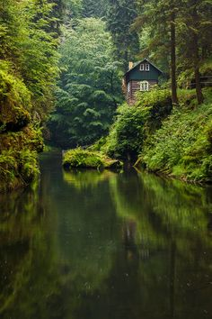 nature Green forest kingdom in the heart of nature Bohemian Switzerland, Czech . Beautiful World, Beautiful Homes, Beautiful Places, Cottage In The Woods, Cabins In The Woods, Places To Travel, Places To Go, Haus Am See, Nature Aesthetic