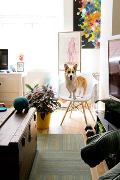 LOVE the painting on the wall. The Corgi dog is cute too =)