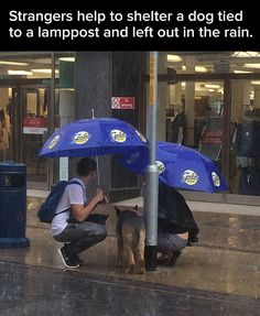 24 pics that will restore your faith in humanity