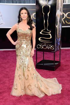 Catherine Zeta-Jones lovely at the 2013 Academy Awards