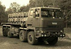 Leyland DAF DROPS tiphook
