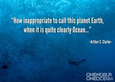 """How inappropriate to call this planet Earth, when it is quite clearly Ocean."" -Arthur C. Clarke"