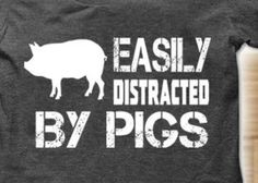 So true. I get so excited at the mere mention of pigs! Pig Showing, Pot Belly Pigs, Pig Pen, Funny Pigs, Showing Livestock, Mini Pigs, Pet Pigs, Flying Pig, This Little Piggy