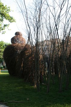 Partially-completed sculpture in the late afternoon. | Room by Room: A Stickwork Sculpture by Patrick Dougherty