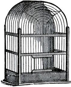 Dome Top Bird Cage Image - The Graphics Fairy