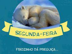 Esse frio do inverno da uma preguiça! Vontade de ficar na cama quentinha... brrrr...  #segunda #sono #frio #animais
