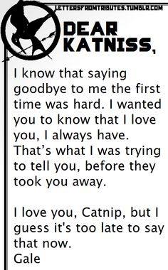[[Dear Katniss, I know that saying goodbye to me the first time was hard. I wanted you to know that I love you, I always have. That's what I was trying to tell you, before they took you away. I love you, Catnip, but I guess it's too late to say that now. Gale]]
