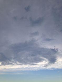 21 best florida weather images on pinterest florida weather rh pinterest com