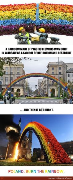 Meanwhile, In Poland - Warsaw , Rainbow , Flowers - Meme Center