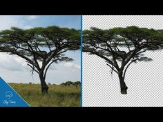 Tricky Cut Outs made EASY and FAST: PHOTOSHOP #76 - YouTube