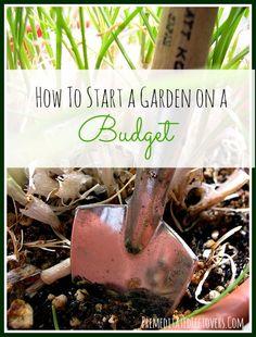 Frugal Gardening Tips: How to Start a Garden on a Budget #health #gardening #budget