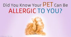 Pet allergies to human dander are fairly common, but often go undiagnosed -- purebred dogs are more likely than mixed breeds to have this type of allergy. http://healthypets.mercola.com/sites/healthypets/archive/2015/04/15/human-dander-allergy.aspx