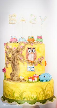 Cake owls WWW.DOLCICHICCHEDIANTONELLA.COM