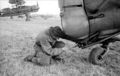 https://flic.kr/p/VcibVh | Aircraft - 1943, Italie, Sicile, Un mécanicien allemand fixe le crochet de remorquage d'un planeur DFS 230 à l'arrière d'un Henschel Hs 126