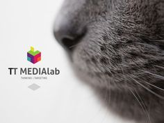 TT MEDIAlab - Concept 1 of X designed by Torkill Lademoe. Connect with them on Dribbble; the global community for designers and creative professionals. Art Direction, Concept, Cats, Creative, Animals, Design, Gatos, Animales, Animaux