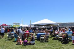 The Benicia Waterfront Festival is one of the best in the bay. #musicfestival #livemusic #visitbenicia