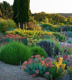 Oltre 1000 idee su Giardino Mediterraneo su Pinterest  Giardinaggio, Progett...