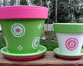pink and green flower pot