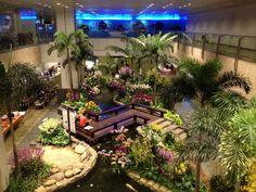Changi Airport: Singapore
