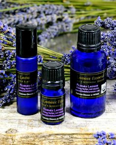 Did you know... Lavender essential oil contains naturally occurring antiseptic and antibacterial properties? It can be used directly on the skin to treat cuts, burns, abrasions, insect bites & stings. It's also a powerful addition to chemical-free cleansing and sanitizing for both body and home. Now you know. Lavender Essential Oil Uses, Essential Oils, Vashon Island, Bainbridge Island, Insect Bites, Natural Oils, Burns, Fragrance, Organic