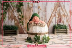 Barrel wooden newborn photography garden theme Newborn Baby Photography, Garden Theme, Bassinet, Barrel, Home Decor, Crib, Decoration Home, Barrel Roll, Room Decor