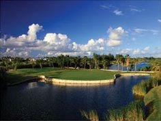 Provo Golf Club, Turks & Caicos, with special rates and packages from Alexandra Resort Caribbean All Inclusive, Southern Caribbean Cruise, All Inclusive Family Resorts, Western Caribbean, Hotels And Resorts, Family Vacations, Turks And Caicos Resorts, Jamaica Cruise, Grace Bay Beach