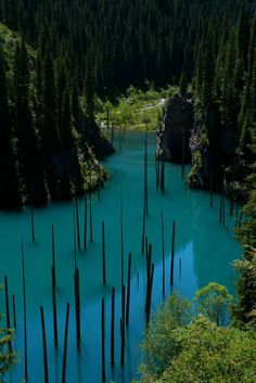 The Sunken Forest of Lake Kaindy. Kaindy Lake is a 400 m (1312 ft ) long and over 30 m (98 ft) deep lake in Kazakhstan's portion of the Tian Shan Mountains.The lake was created after a massive 1911 Kebin earthquake that triggered a large landslide blocking the gorge and forming a natural dam. Then rainwater filled the valley and created the lake.