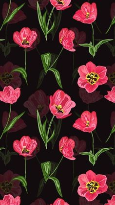 Wallpaper iPhone Black and magenta poppy Print Wallpaper, Black Wallpaper, Flower Wallpaper, Pattern Wallpaper, Wallpaper Backgrounds, Wallpaper Ideas, Beste Iphone Wallpaper, Computer Wallpaper, Cellphone Wallpaper