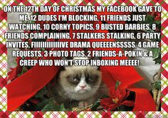 i read that to the tune of 12 days of christmas and laughed really hard. So happy i do not have fb