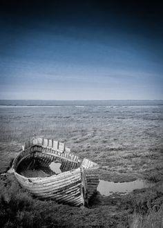 _MG_1679.jpg   by Steve Crossman Photography