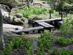 Kuvahaun tulos haulle Kiinalainen puutarha