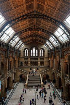 Natural History Museum main interior hall