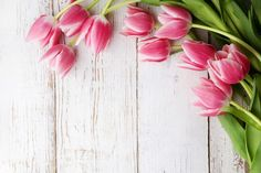 beautiful tulips on wooden background top view Photo Frame Wallpaper, Lip Wallpaper, Iphone Wallpaper Glitter, Flower Background Wallpaper, Wooden Background, Background Pictures, Flower Backgrounds, Growing Tulips, Happy Birthday Art