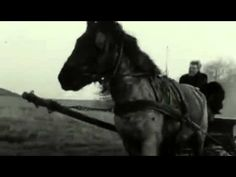 The Turin Horse - Opening Scene - YouTube