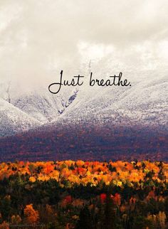 ❥ just breathe