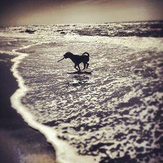 .. on the beach #beach #photography