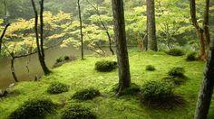 Japanese gardens: I love them & the philosophy behind them.
