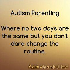 Autism parenting