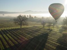 <p><strong>WHAT'S TO LOVE?</strong> Balloon rides at dawn, wine tastings in local vineyards, and fab... - Courtesy balloonrides.com